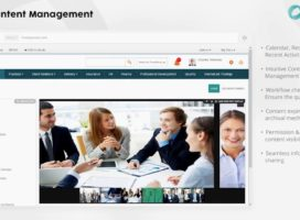 On Building Your Companies Intranet
