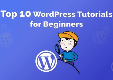 Top 11 Frequently Asked Questions by WordPress beginners