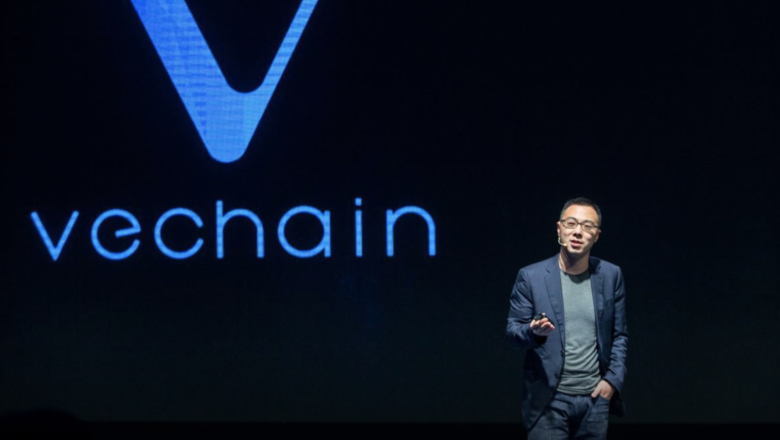 Getting Vechain For Business Purposes